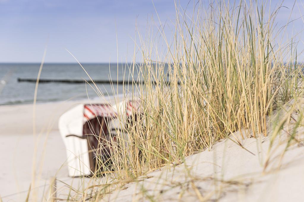 Luxus Strandkorb